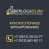 АН Берлога55